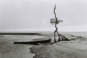 "Foto de Omar Melussi compõe a mostra ""Paisagem""."
